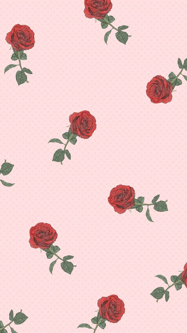 Wallpaper, Rose, And Pink Image - Iphone Aesthetic Wallpaper Rose - HD Wallpaper