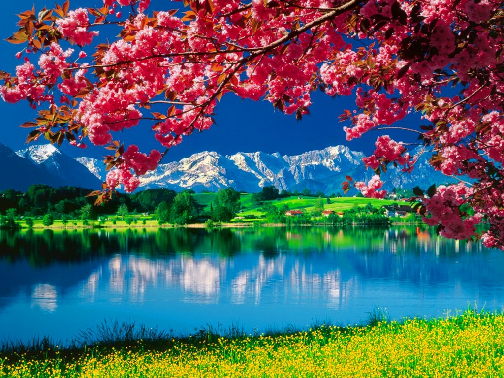Nature Wallpaper - Beautiful Wallpapers Of Nature For Desktop Free Download - HD Wallpaper