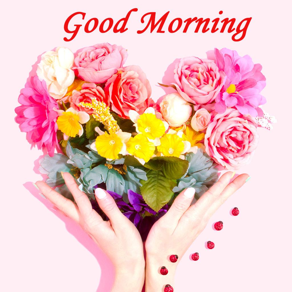 Good Morning Wallpaper For Lover, Latest Images Of - New Latest New Good Morning - HD Wallpaper