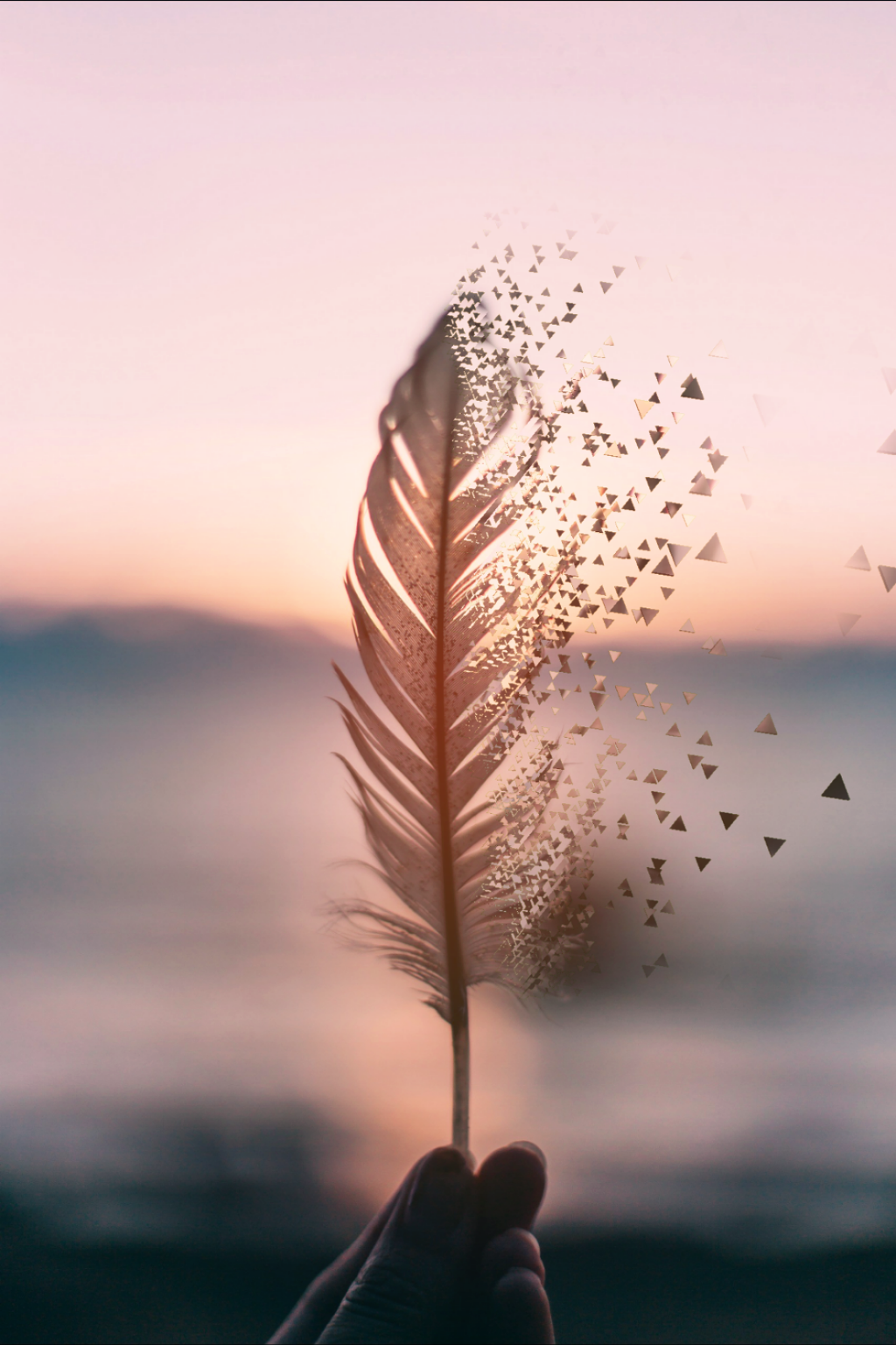Photography Tumblr Wallpaper   Feather Blowing In The Wind ...