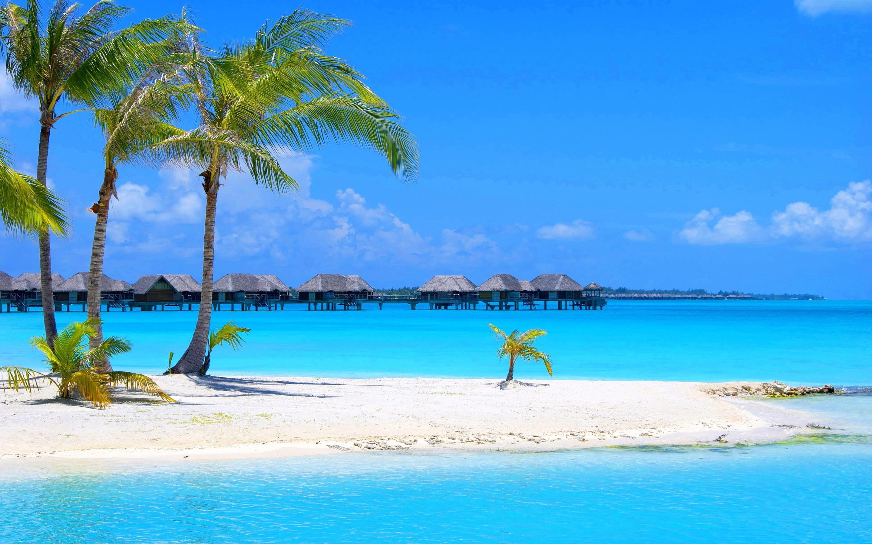 2880x1800, Beach Wallpaper Hd Background Wallpaper - Tropical Summer Desktop Backgrounds - HD Wallpaper
