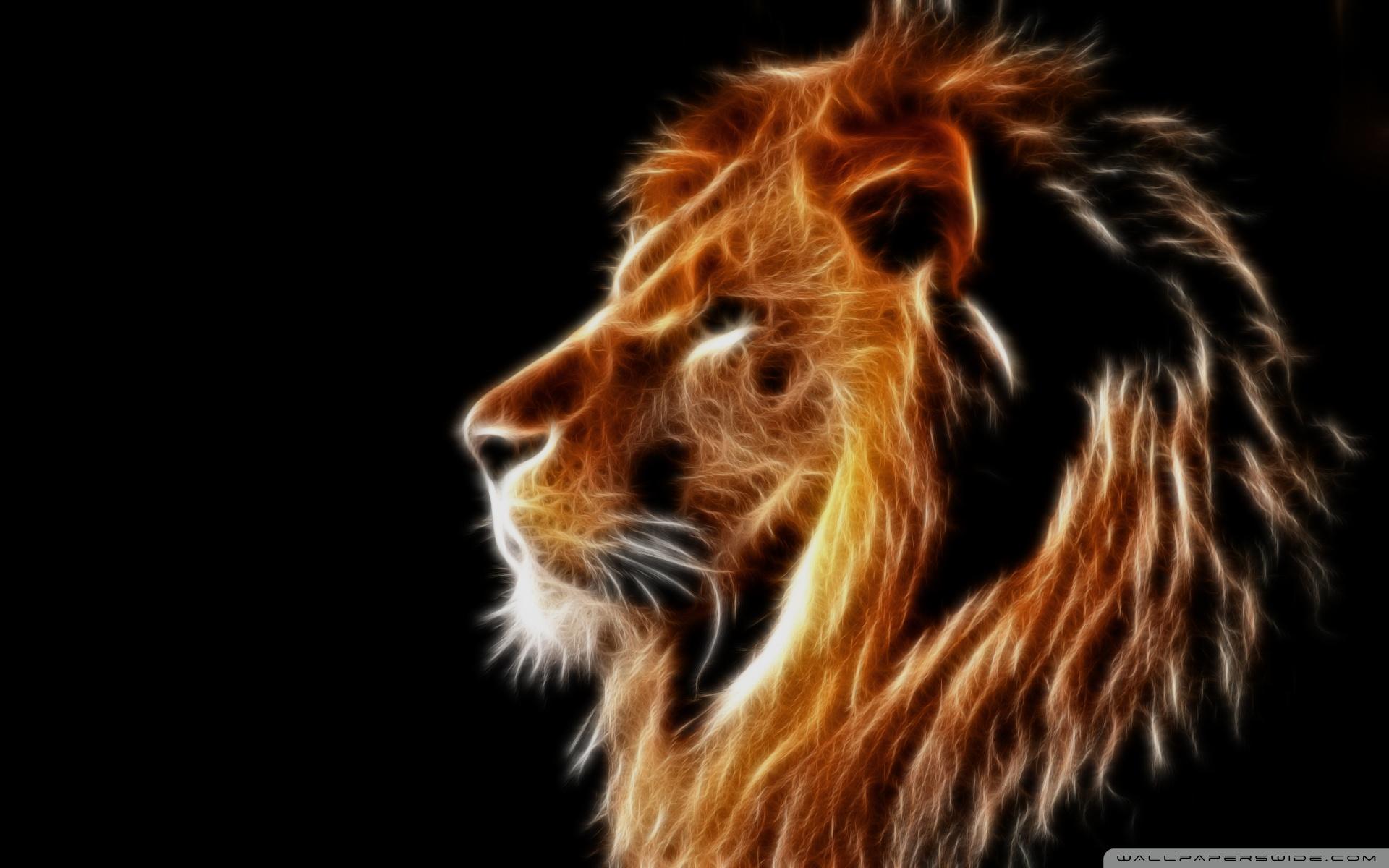 1 13271 glowing lion 4k hd desktop wallpaper for