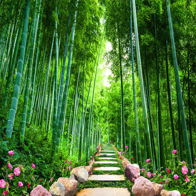 Bamboo Forest With Water - HD Wallpaper