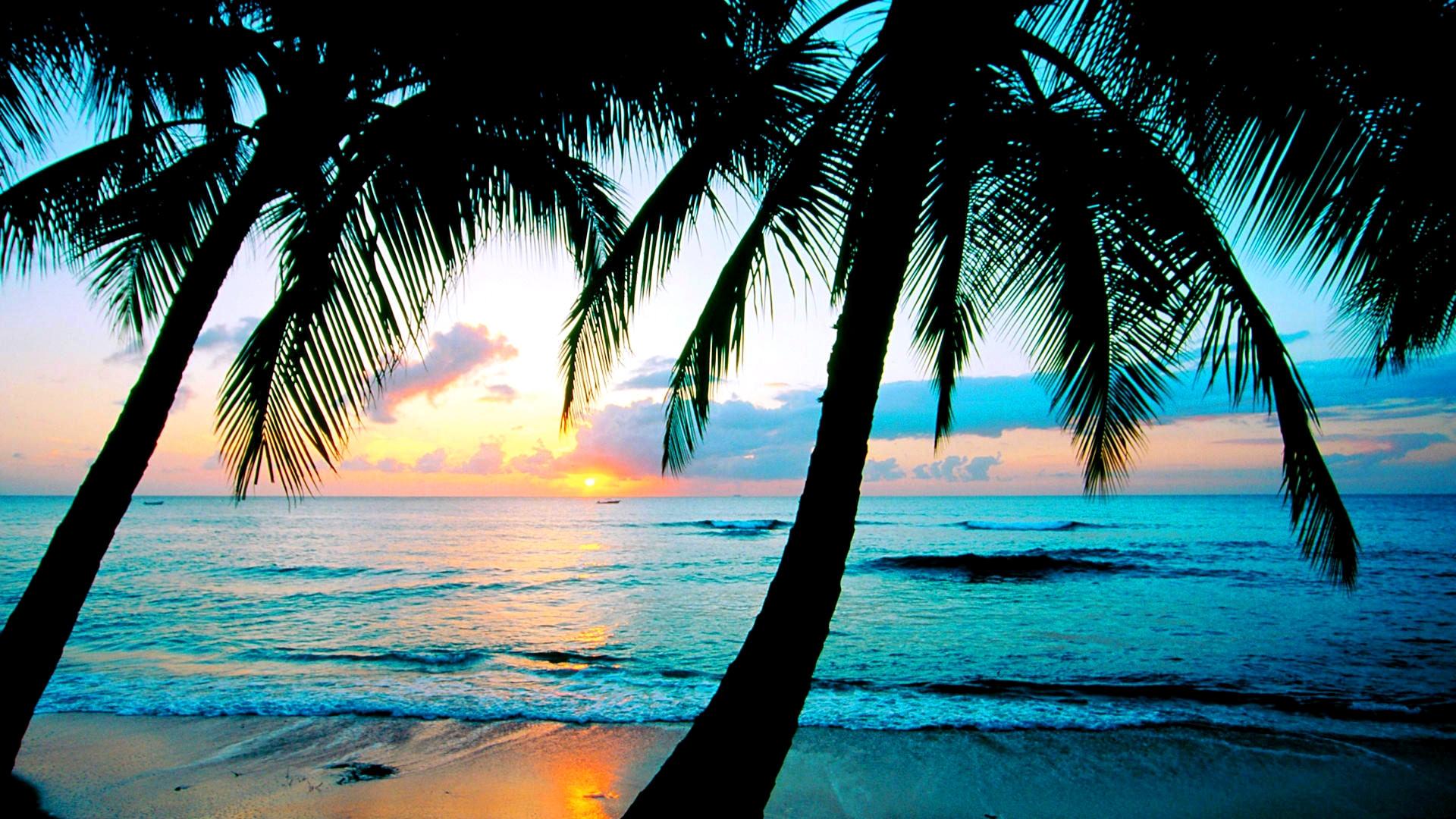 Beach Desktop Wallpapers Download Beach High Resolution Desktop Backgrounds 1920x1080 Wallpaper Teahub Io
