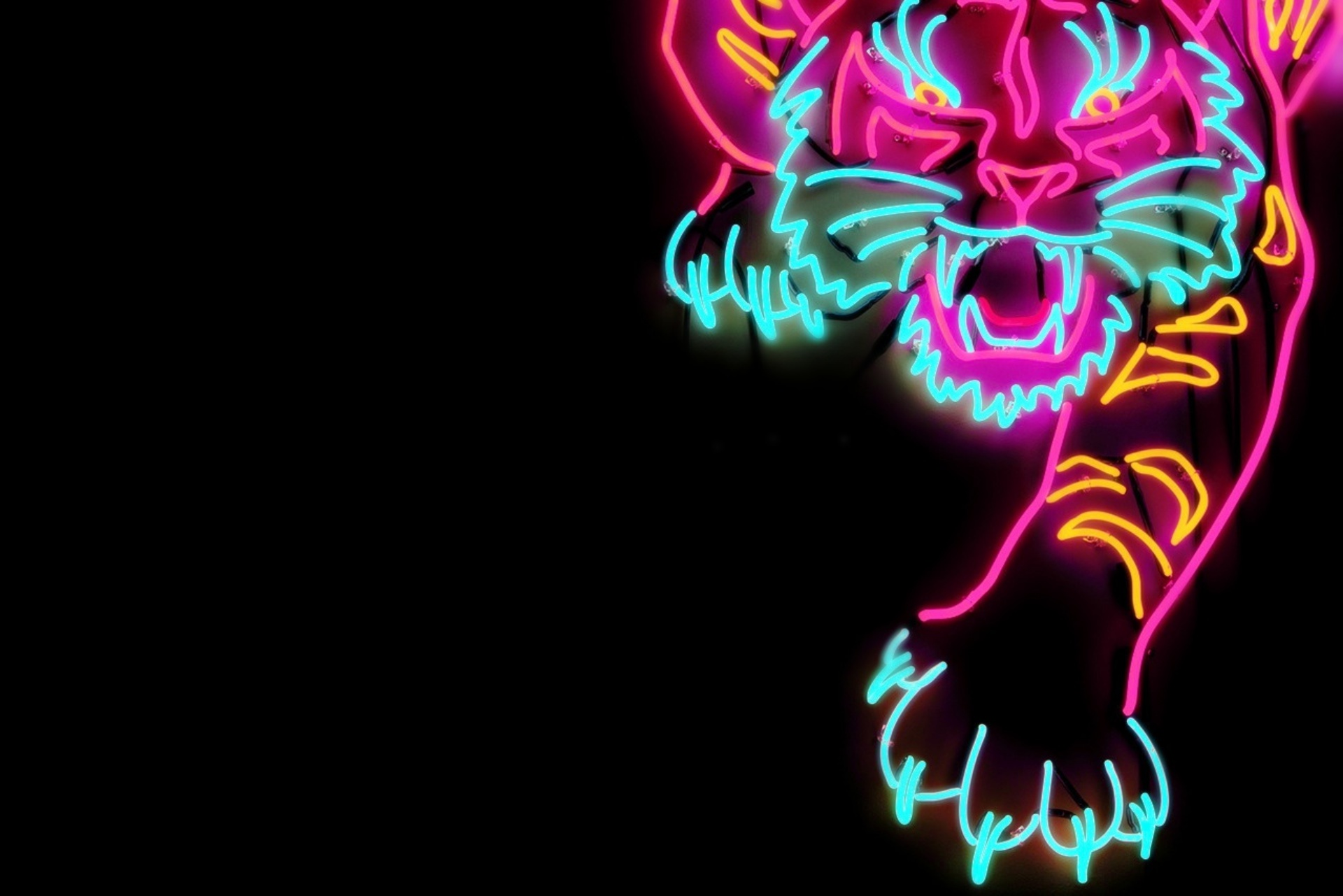 Tiger Neon - HD Wallpaper