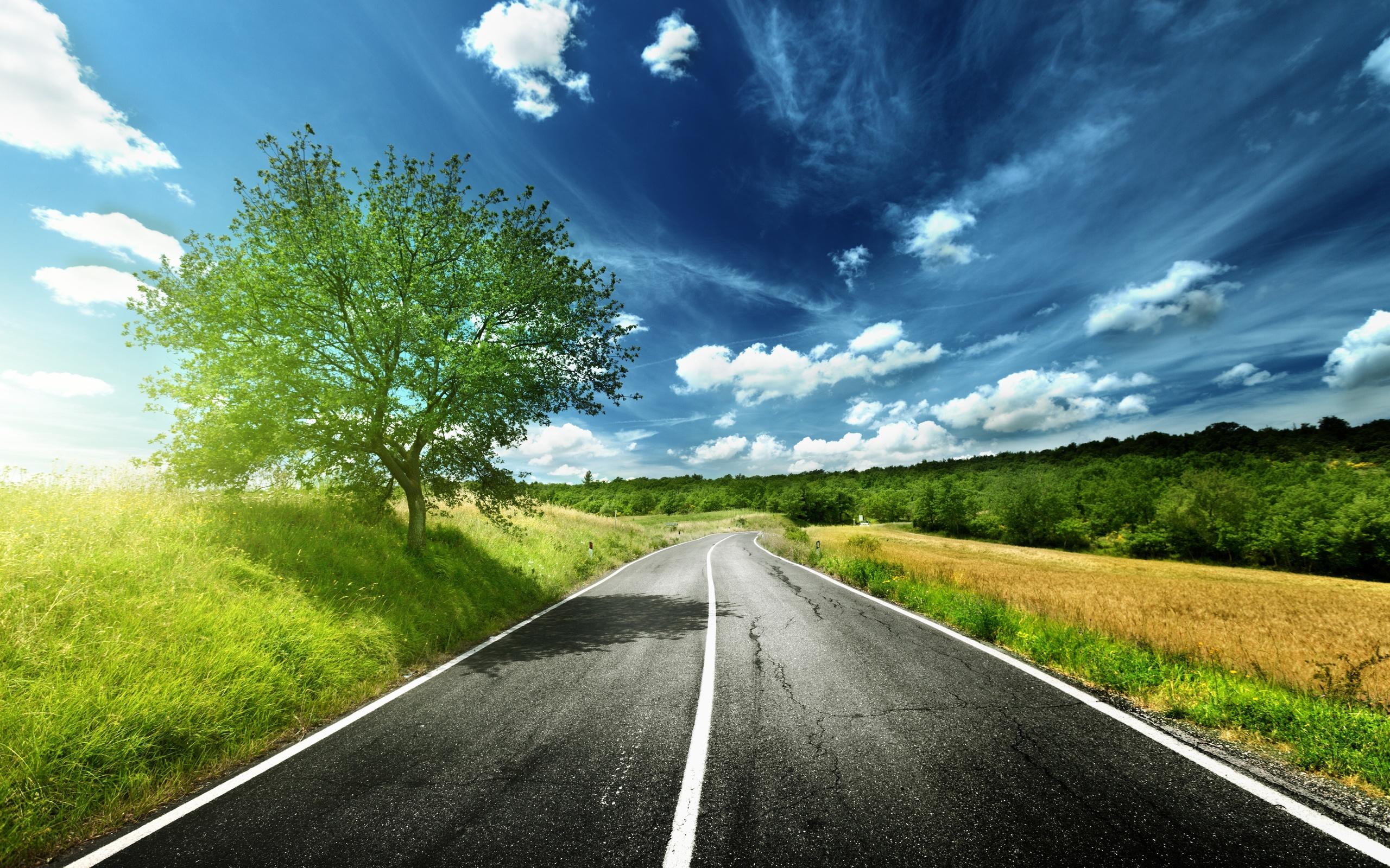 Hd Road Wallpapers 1080p 2560x1600 Wallpaper Teahub Io