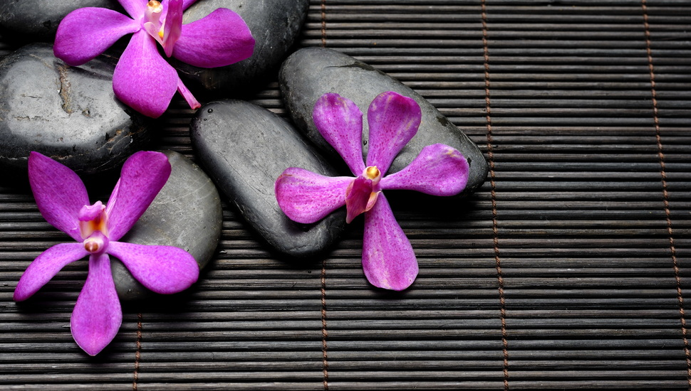 Bamboo Spa Spa Stones Flowers Zen Black Purple Flower Hd Black Iphone 970x550 Wallpaper Teahub Io