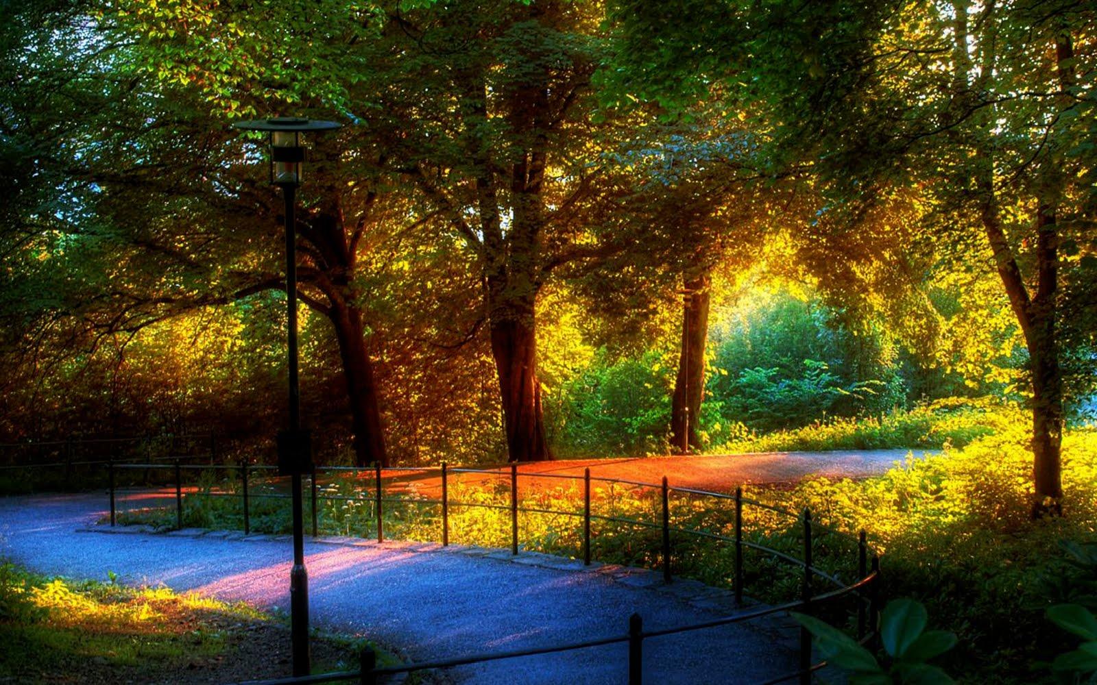 Beautiful Nature Images World - HD Wallpaper