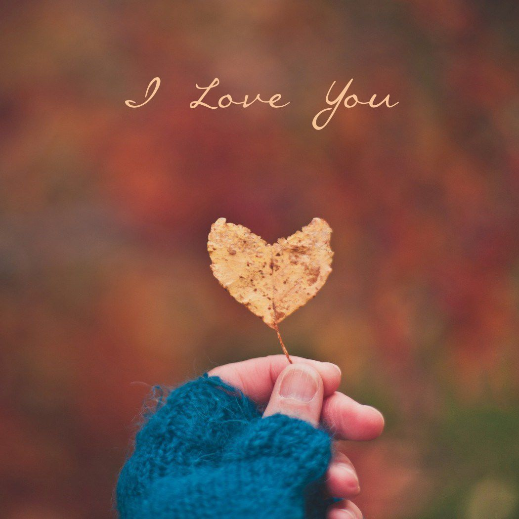 I Love You Mobile Wallpapers And Whatsapp Dp Love, - Love Profile Dp Pic Whatsapp - HD Wallpaper
