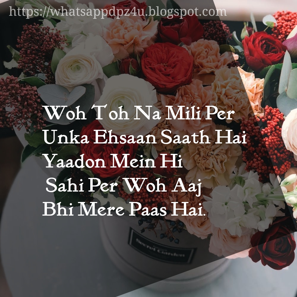 Whatsapp Love Dp For Couples Facebook Etc Images In - Profile Dp For Whatsapp - HD Wallpaper
