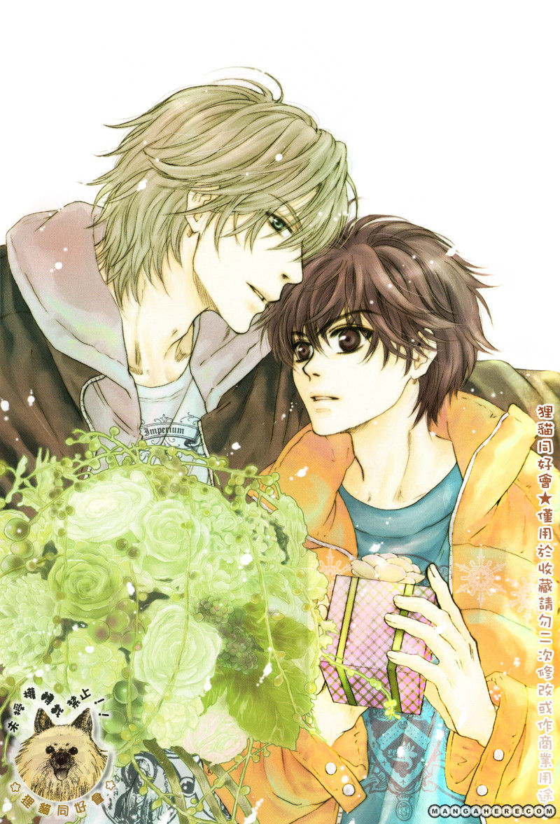 Kaidou Haru Super Lovers Ren And Haru 800x1177 Wallpaper Teahub Io