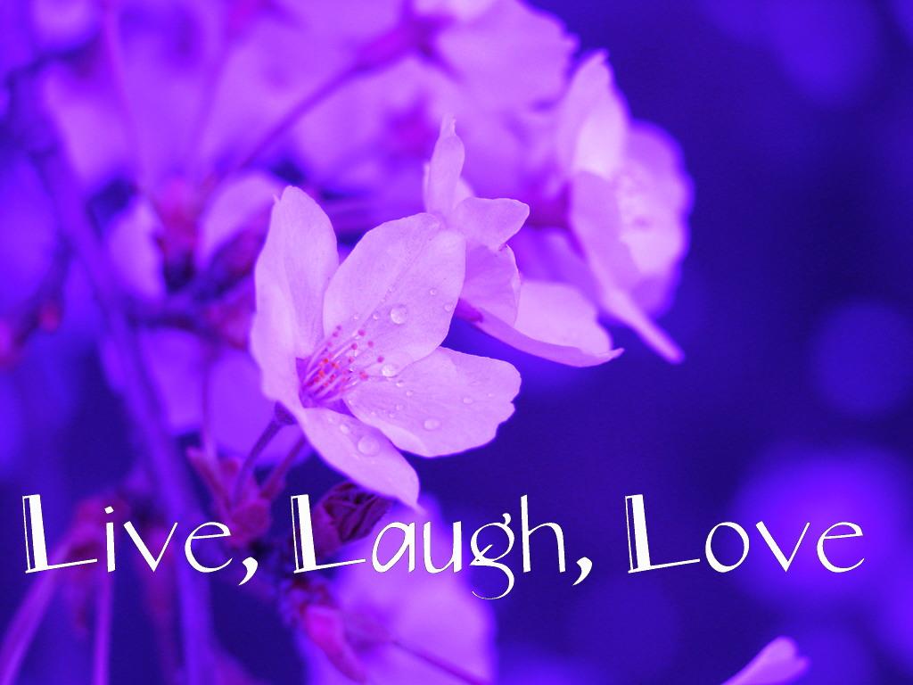 Live Wallpaper Love And Make This Free Live Wallpaper - Desktop Background Live Laugh Love - HD Wallpaper