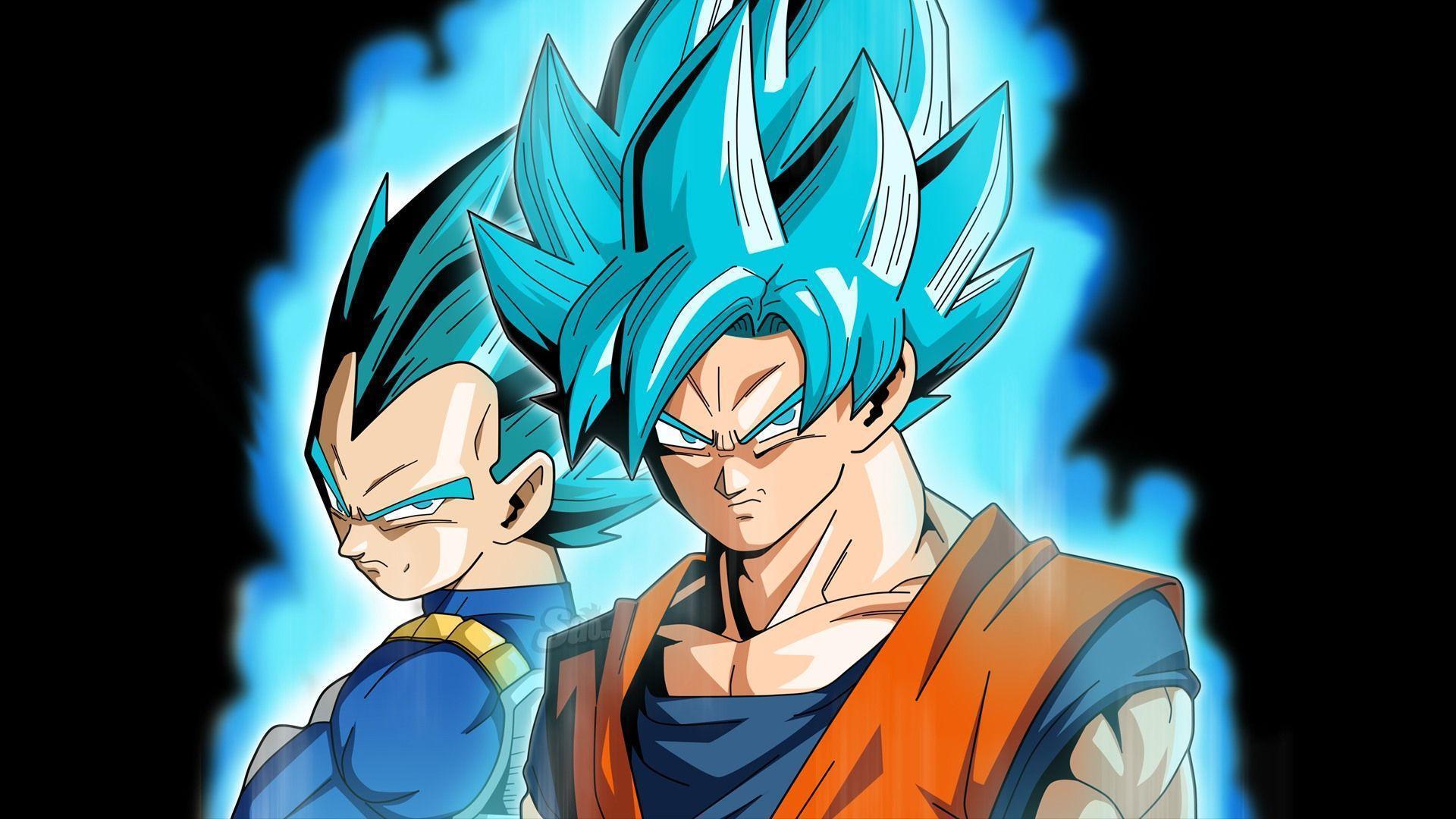 Dbz Vegeta Wallpaper Hd Goku And Vegeta Blue 1920x1080 Wallpaper Teahub Io