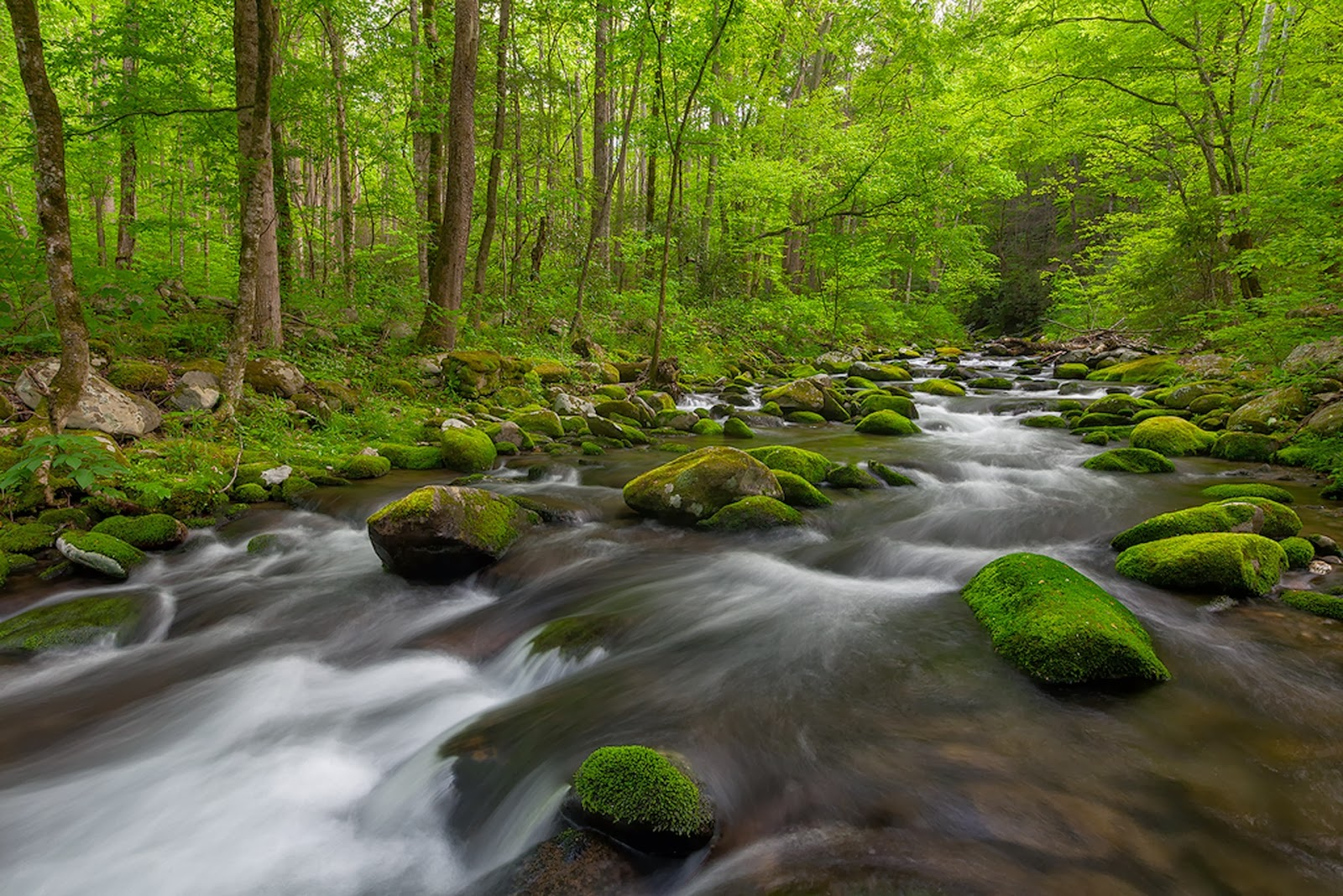 Widescreen Full Hd Green Nature Waterfall Images For - Hd Natural Wallpapers For Laptop - HD Wallpaper