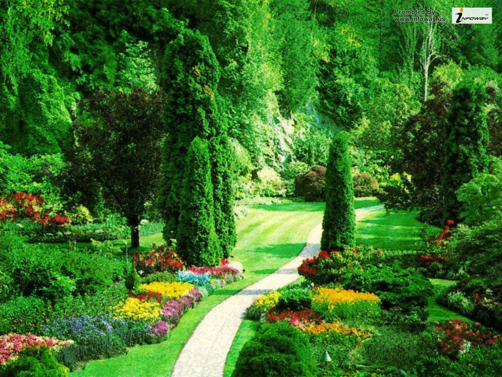 Most Beautiful Nature Scenery World - HD Wallpaper
