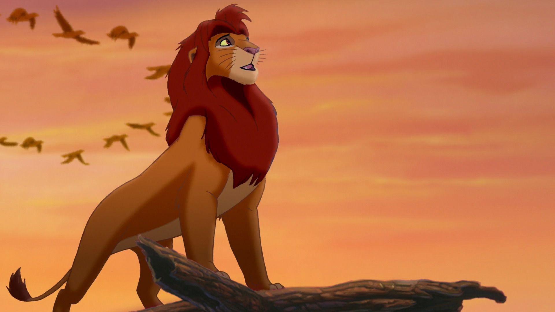 Simba - Simba End Of Lion King - HD Wallpaper