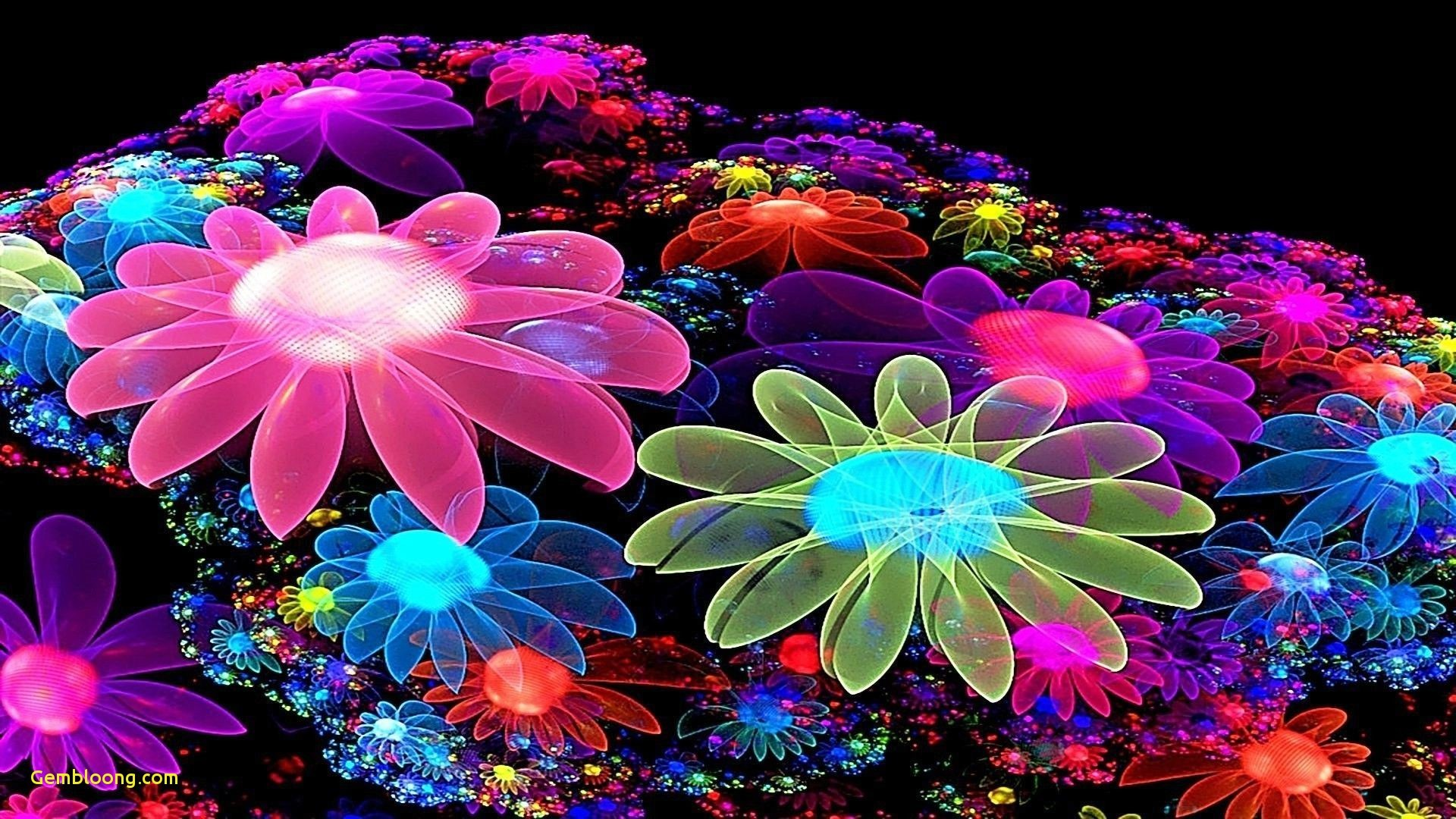 1920x1080, Amazing Colorful Wallpapers Beautiful Colorful - Flower Image 3d Hd - HD Wallpaper