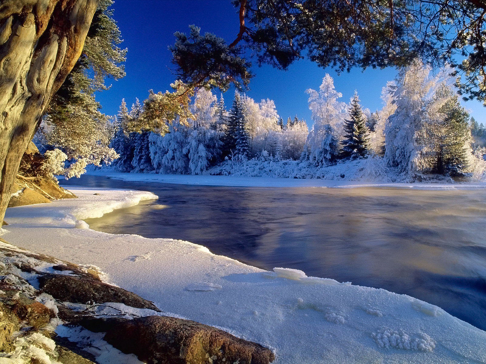Beautiful Hd Winter Wallpapers - Best Pics Ever Nature - HD Wallpaper