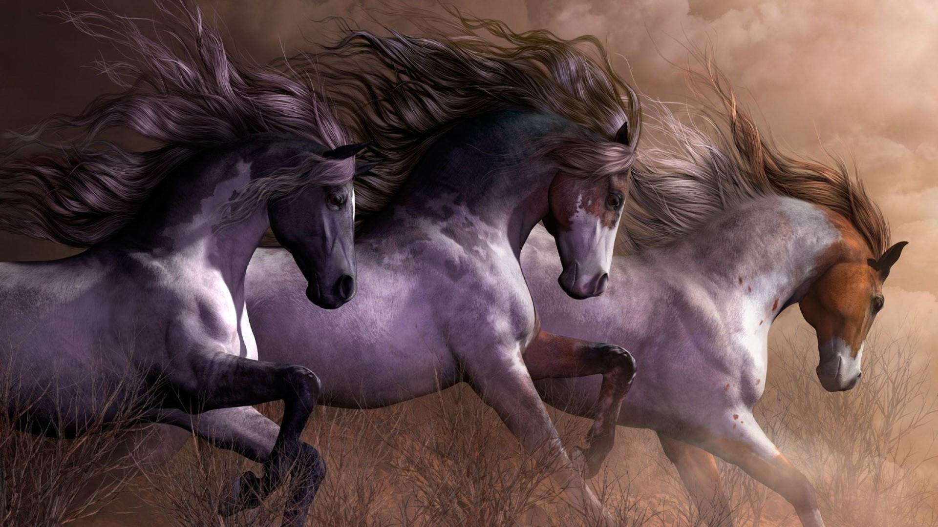 1920x1080 Galloping Wild Horses Wallpaper 3 Horses Running 1920x1080 Wallpaper Teahub Io