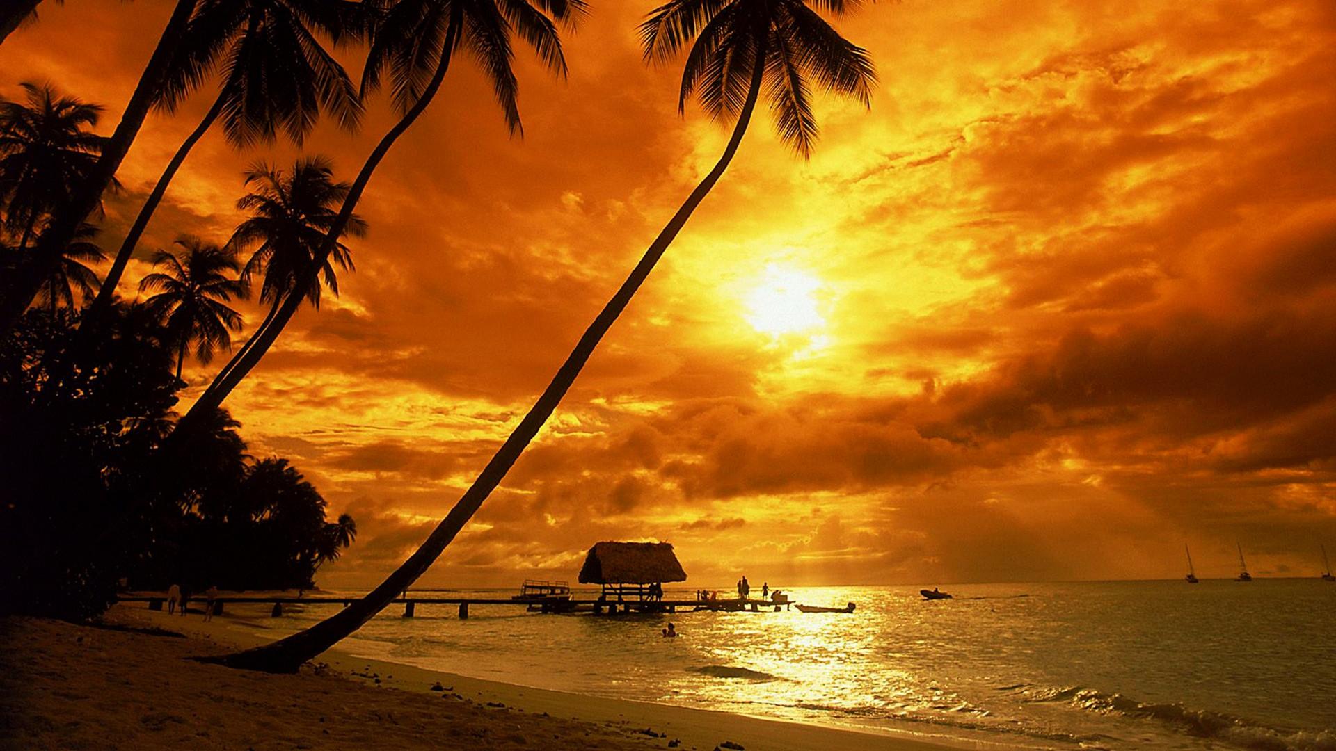 Free Wallpaper For Macbook Air   Data-src - Tropical Beach Sunset Background - HD Wallpaper