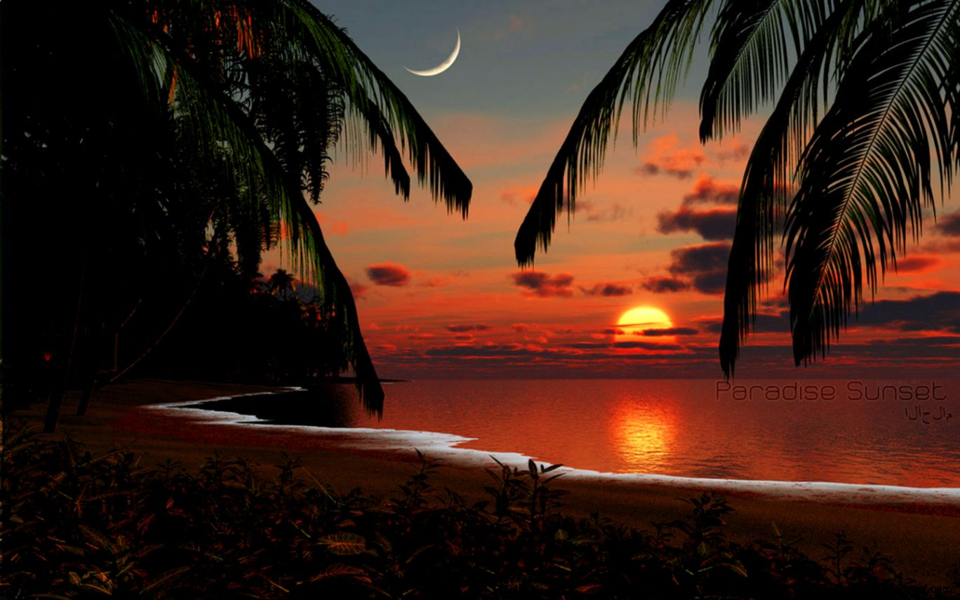 Paradise Sunset Beach Background - HD Wallpaper