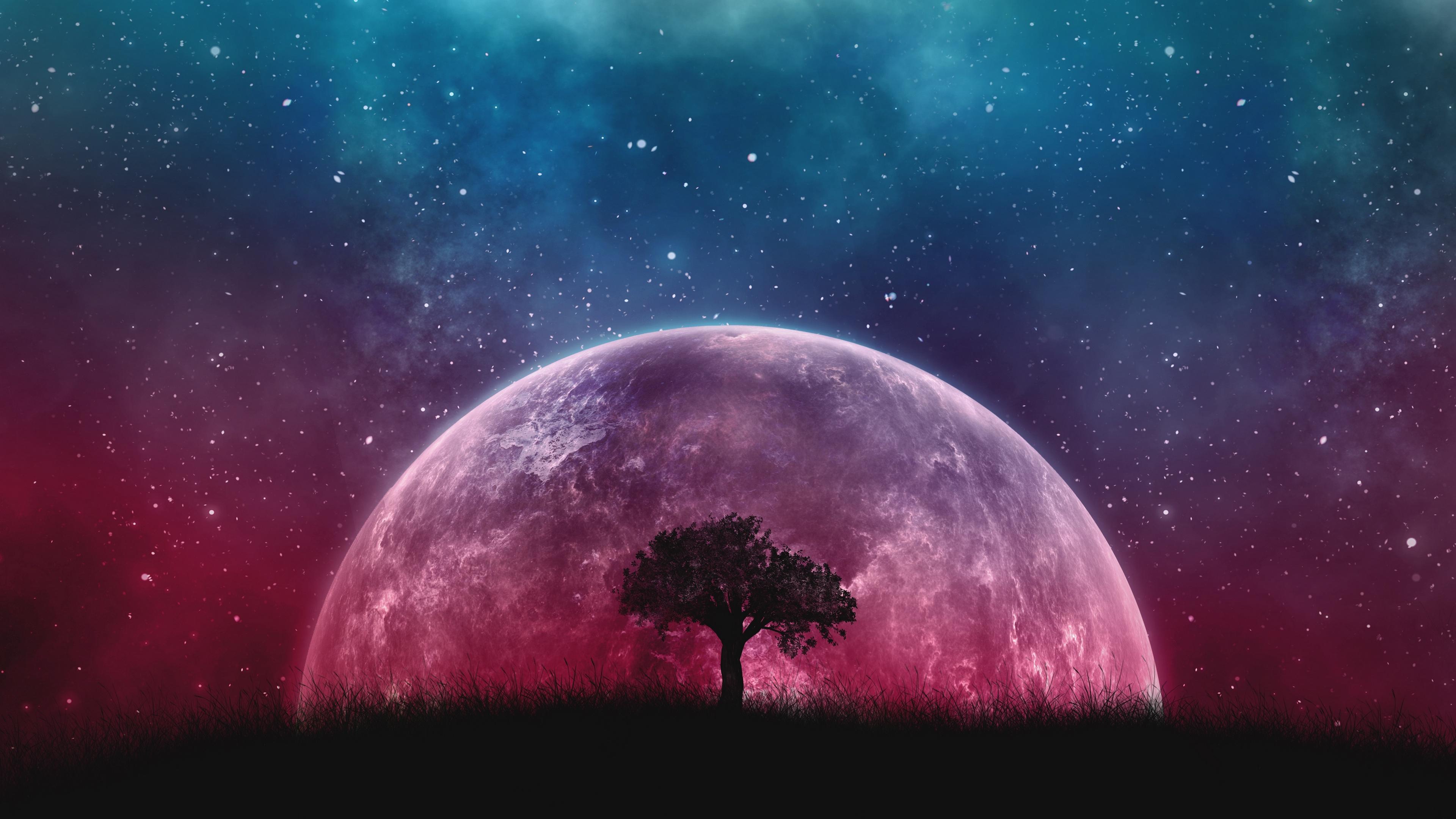 Wallpaper Tree Planet Stars Galaxy Art Galaxy Wallpaper For Laptop 2048x1152 Wallpaper Teahub Io