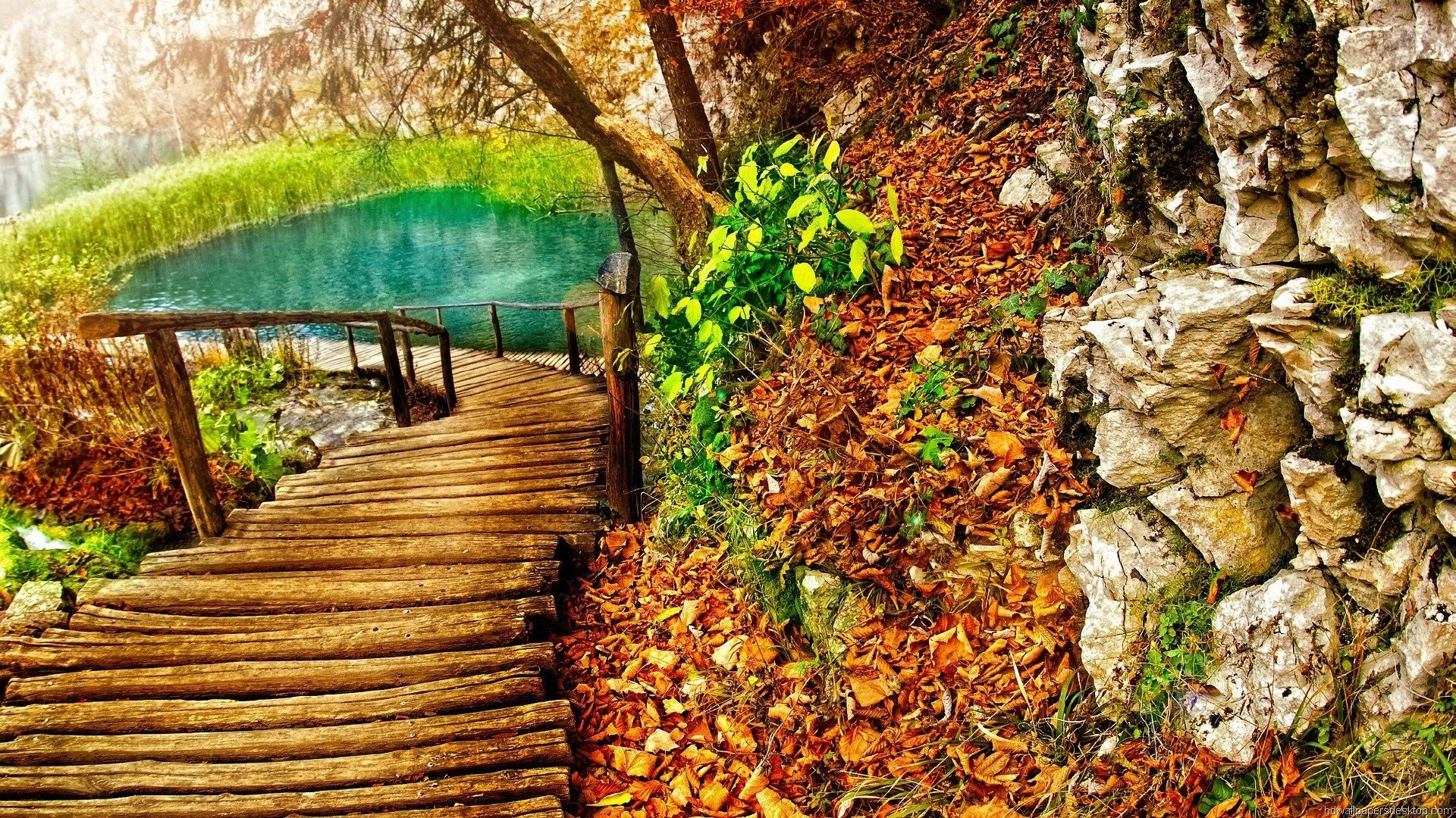 Nature Wallpapers Full Hd 1080p - HD Wallpaper