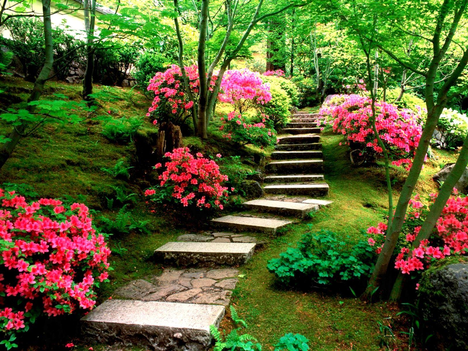 Natural Flower Garden Wallpaper Natural Flower Garden Natural Garden Pic Hd 1600x1200 Wallpaper Teahub Io