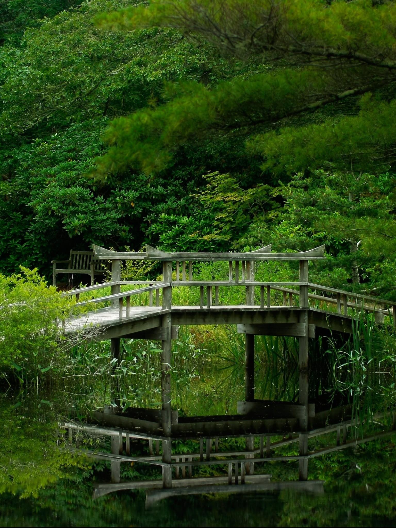 Lake Forest Bridge Nature Garden Wallpaper - Forest Ultra 4k Hd - HD Wallpaper