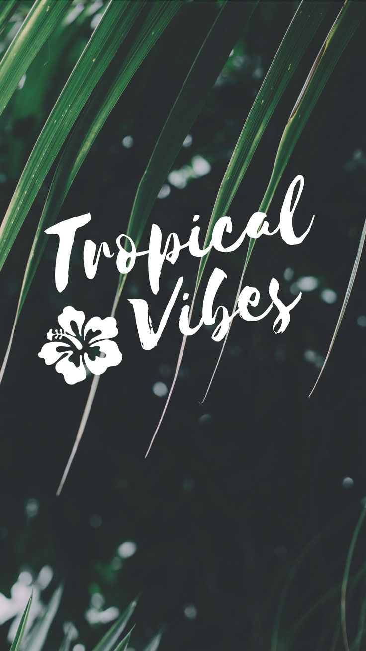 Tropical Vibes Quote Iphone 7 Plus Wallpaper Tap Iphone Wallpaper Tropical Vibes 736x1308 Wallpaper Teahub Io