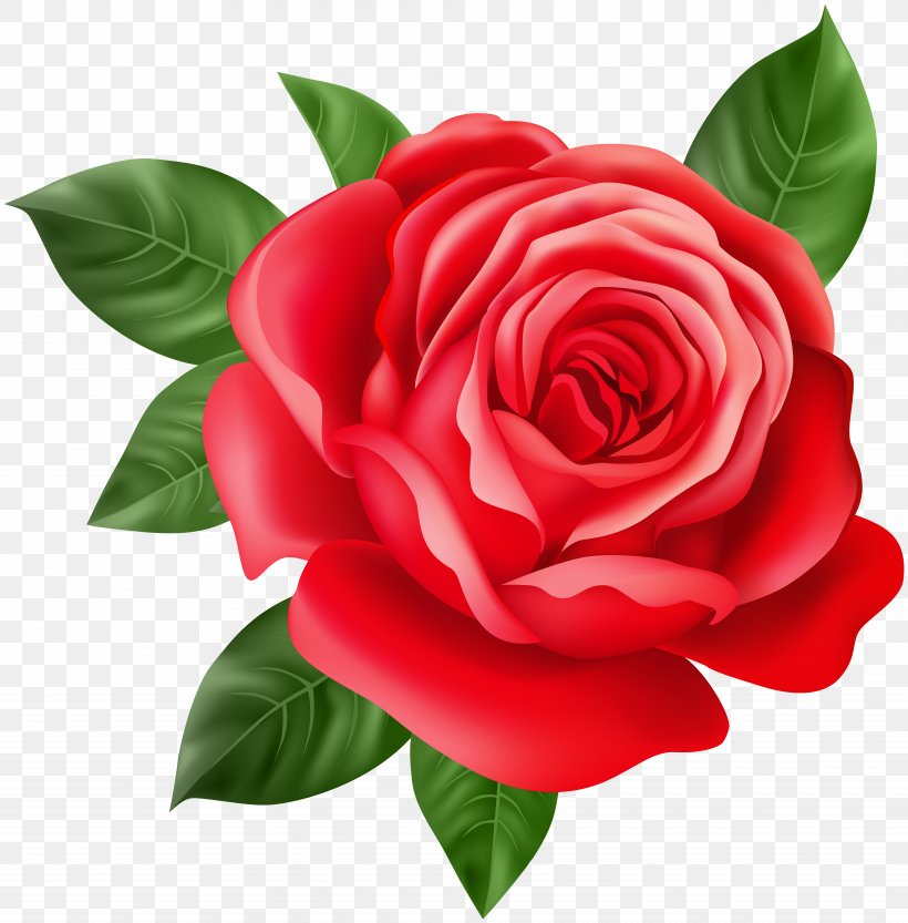 Purple Rose Home Purple Rose Home Red, Png, 7873x8000px, - Purple Rose Clipart - HD Wallpaper