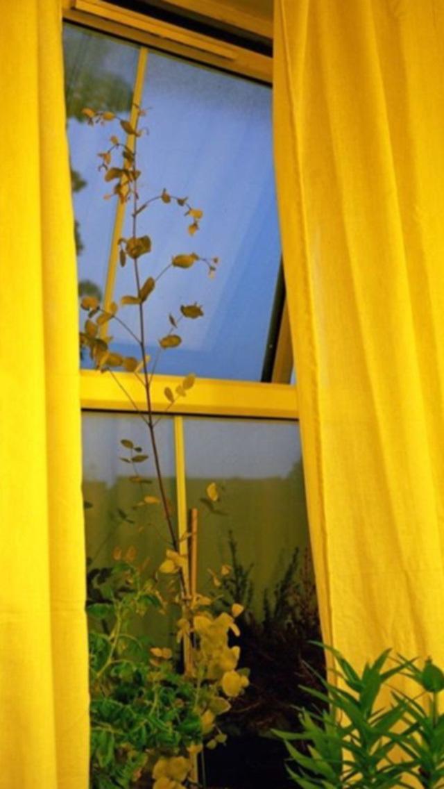 Yellow, Aesthetic, And Grunge Image - Yellow Aesthetic Grunge - HD Wallpaper