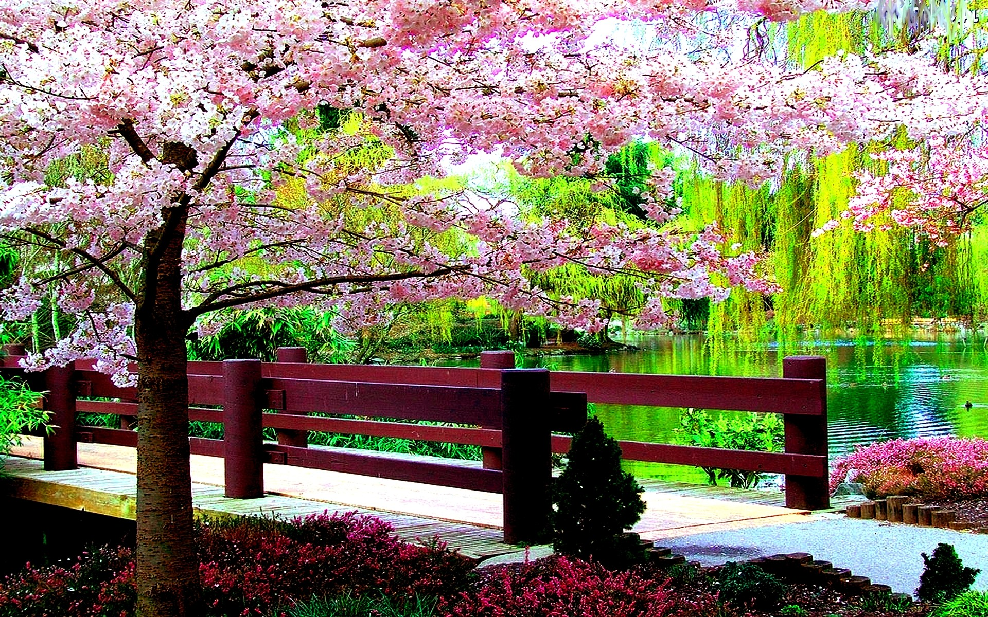 Free Spring Desktop Wallpapers ~ Toptenpack - Spring Desktop Background Nature - HD Wallpaper