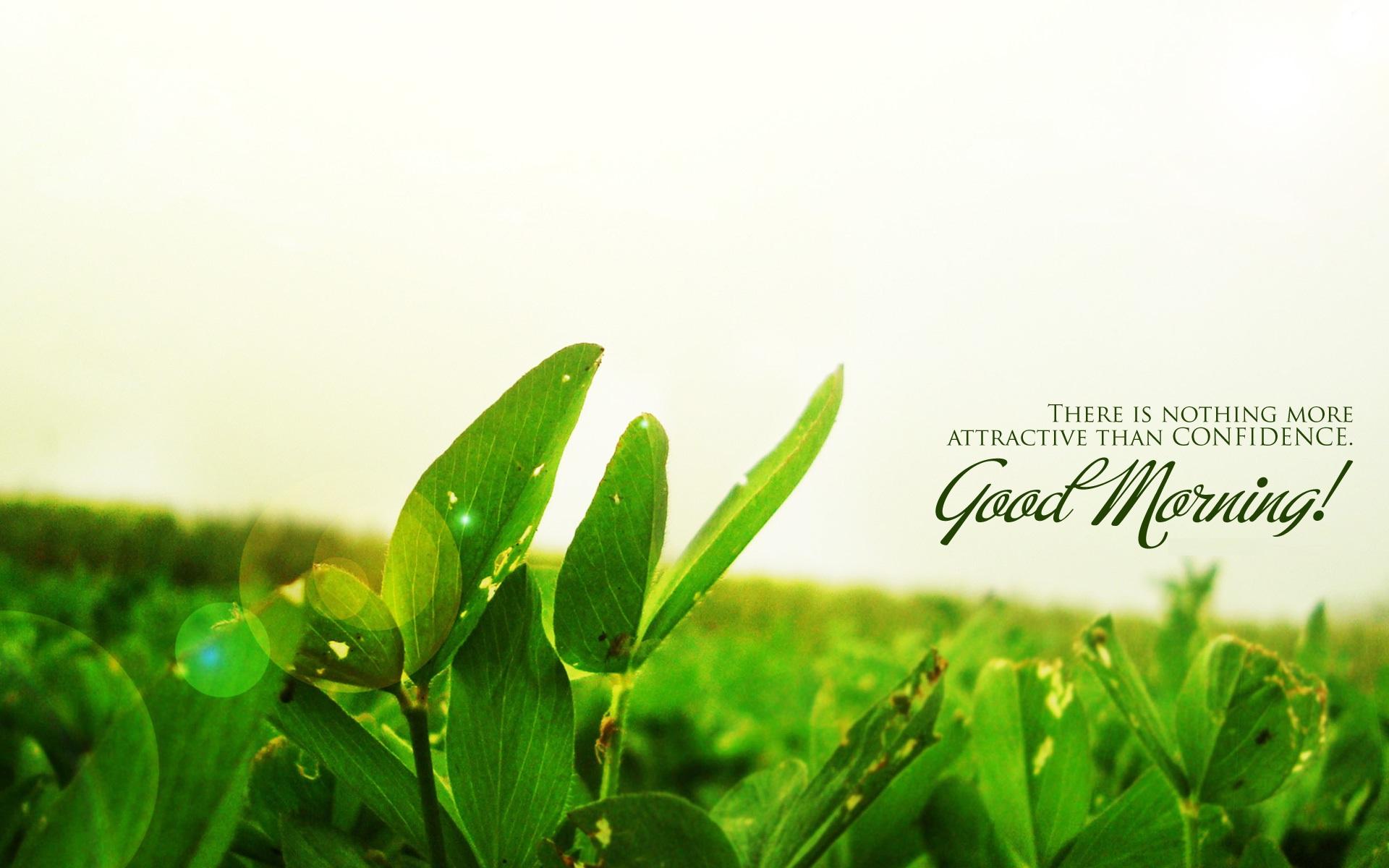 Good Morning Quotes Hd Wallpaper - Inspirational Good Morning Nature Quotes - HD Wallpaper