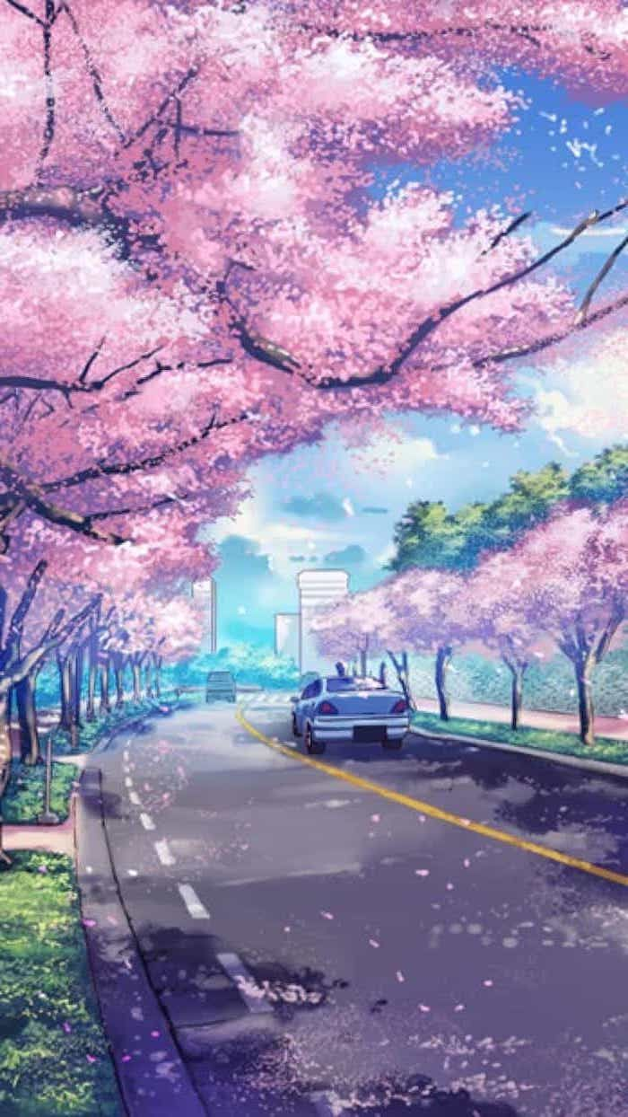 Painting Of A Road, With Pink Blooming Trees Along, - Beautiful Wallpaper For Phone - HD Wallpaper