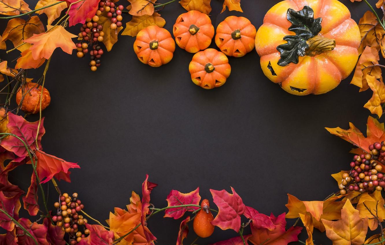 131 1312710 halloween pumpkin background