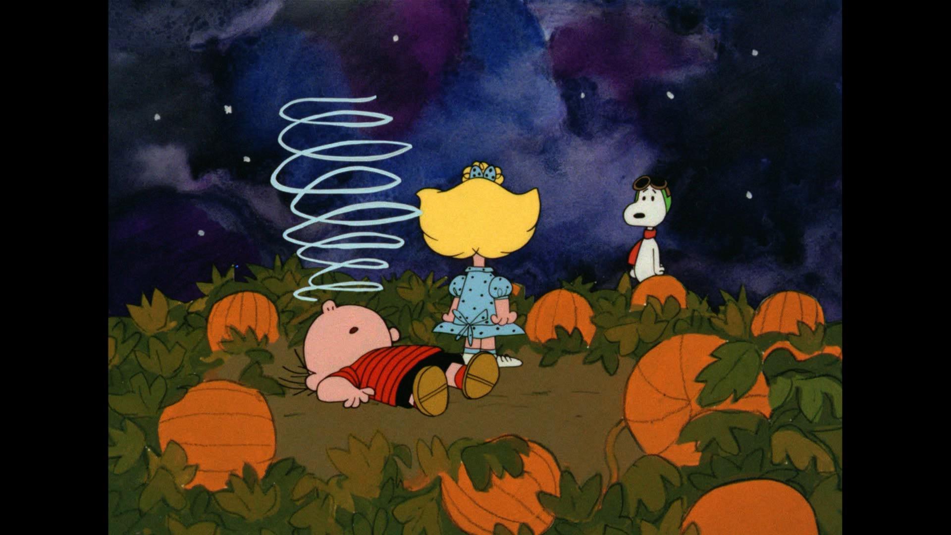 Great Pumpkin Charlie Brown Hd Backgrounds - Great Pumpkin Charlie Brown Desktop - HD Wallpaper
