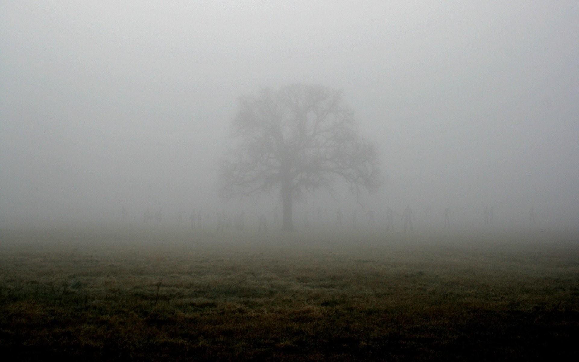 Horror, Scary, Creepy,dark, Evil, Hd Art Wallpapers, - Fog - HD Wallpaper