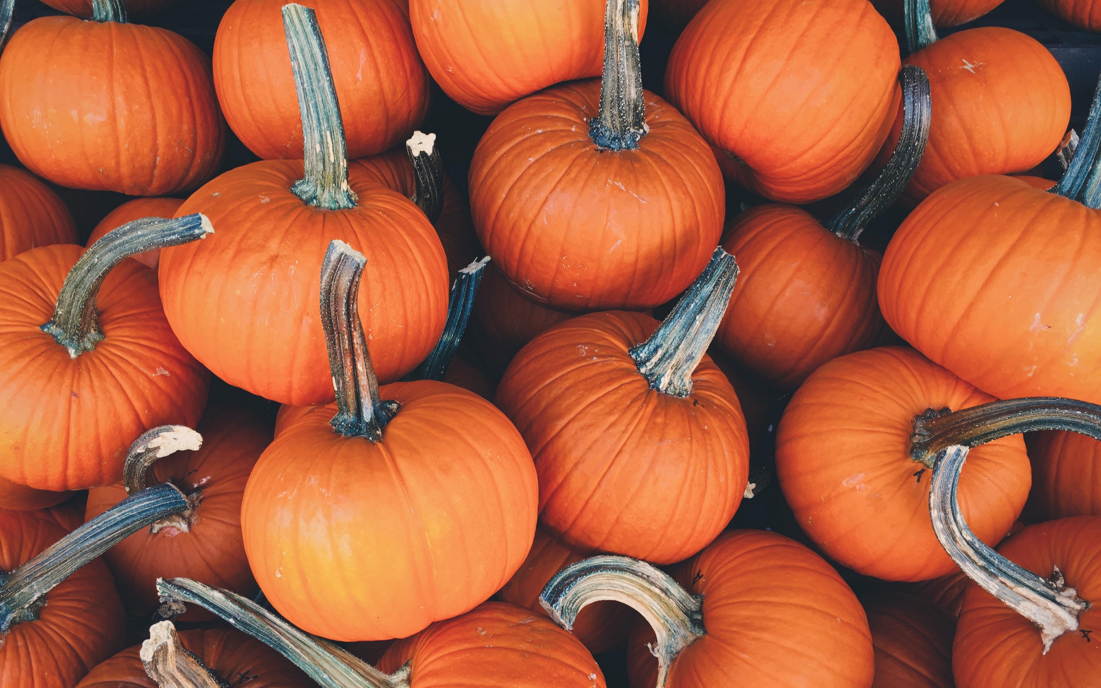 Wallpaper Pumpkin, Vegetables, Autumn ...