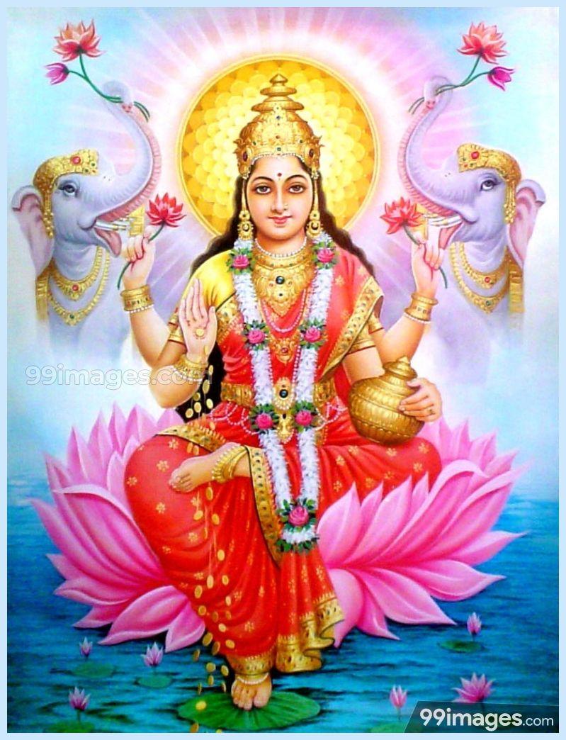 God Lakshmi 799x1044 Wallpaper Teahub Io