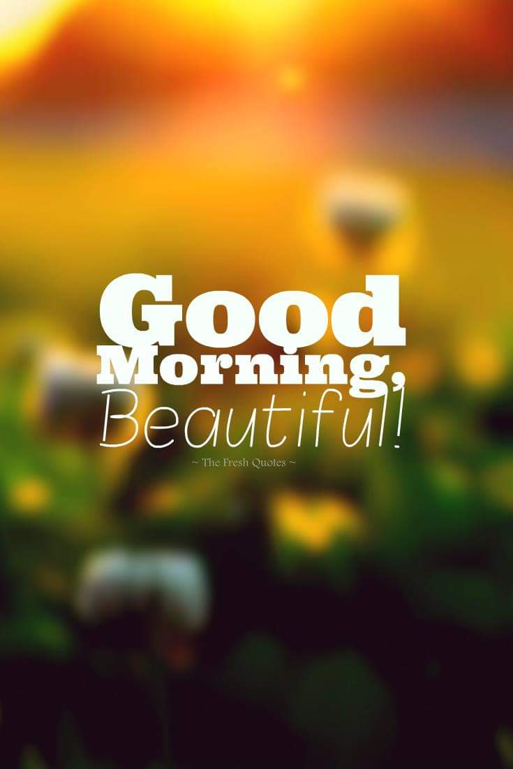 Beautiful Cute Good Morning Quotes - HD Wallpaper