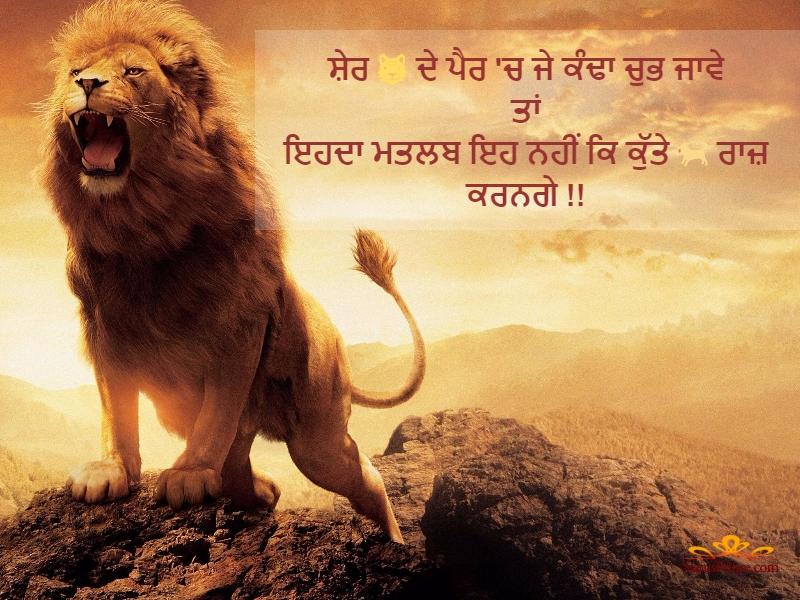 Lion Quotes In Punjabi - HD Wallpaper
