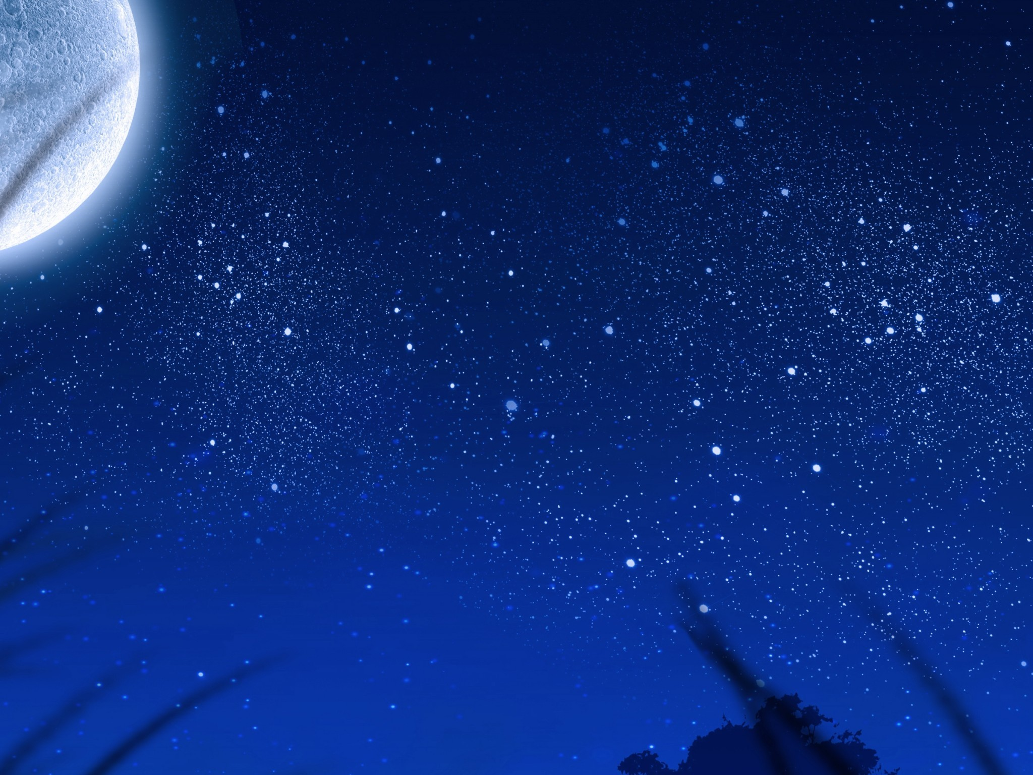 Big Moon Stars Plants Night Scenic Star 2048x1536 Wallpaper Teahub Io