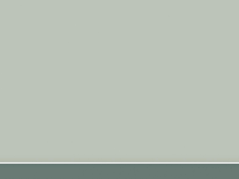 136 1365123 wallpaper warna polos ivory