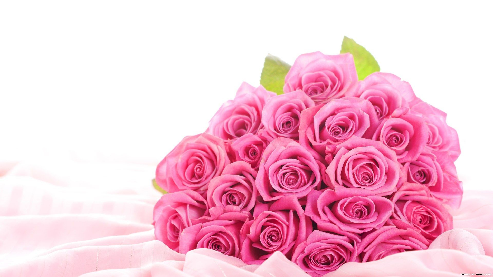 1920x1080, [rt] Beautiful Rose Wallpapers   Data Id - Flower Beautiful Pictures Pink Roses - HD Wallpaper