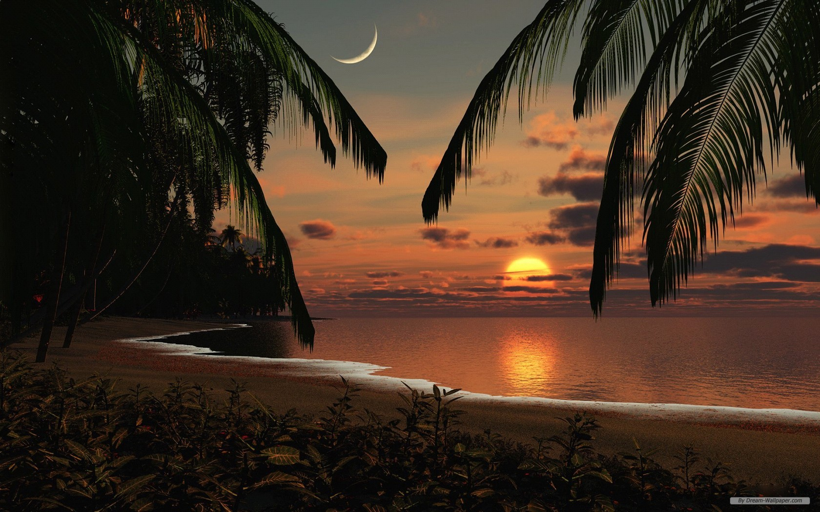 Wallpaper Free Nature Wallpaper 3d Landscape Desktop - Sun Beach Palm Trees - HD Wallpaper