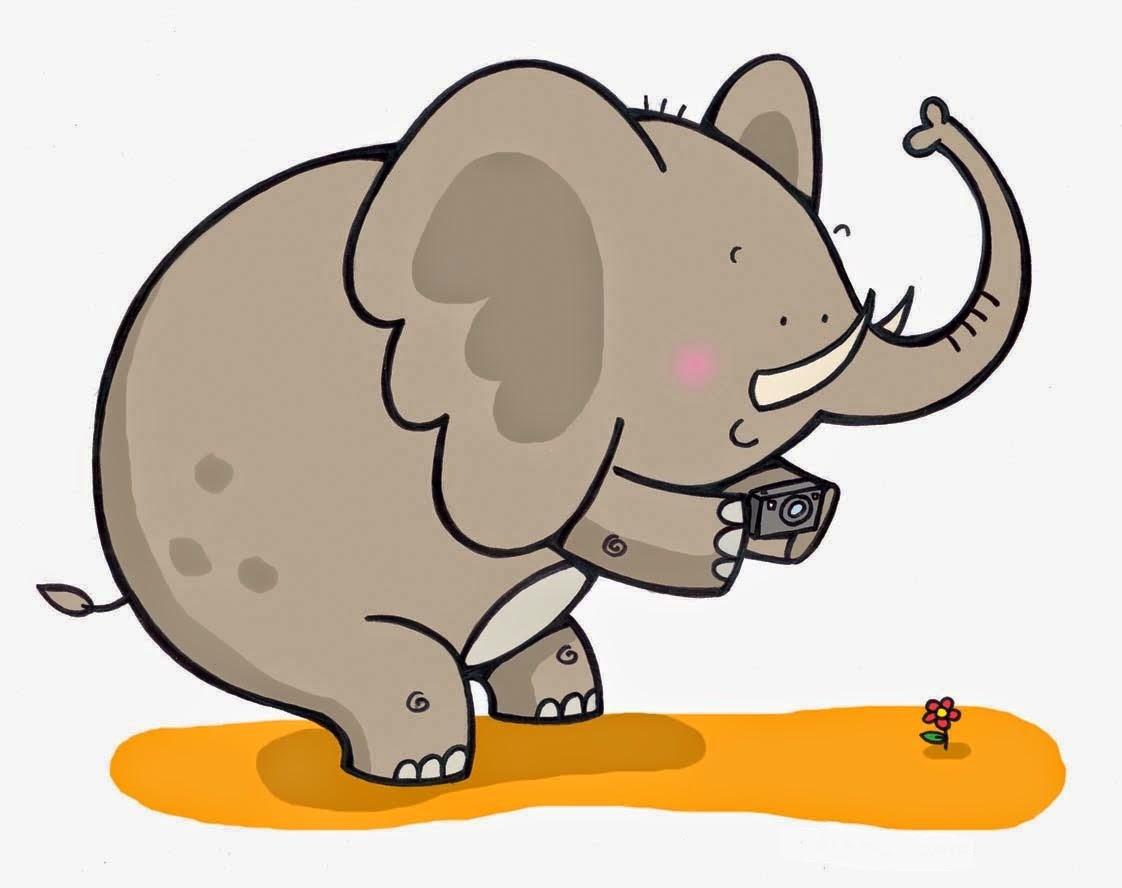 Untruthful Elephant - HD Wallpaper