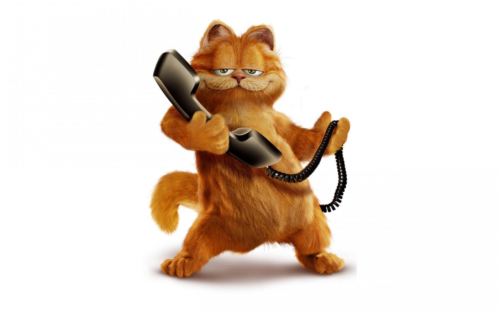 Garfield, Kucing, Kartun - Garfield On The Phone - HD Wallpaper