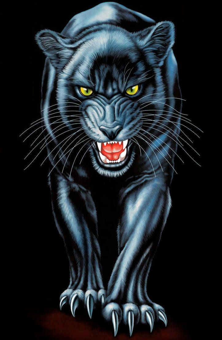 Animal Wallpaper Cool Iphone Black Panther 723x1105 Wallpaper Teahub Io