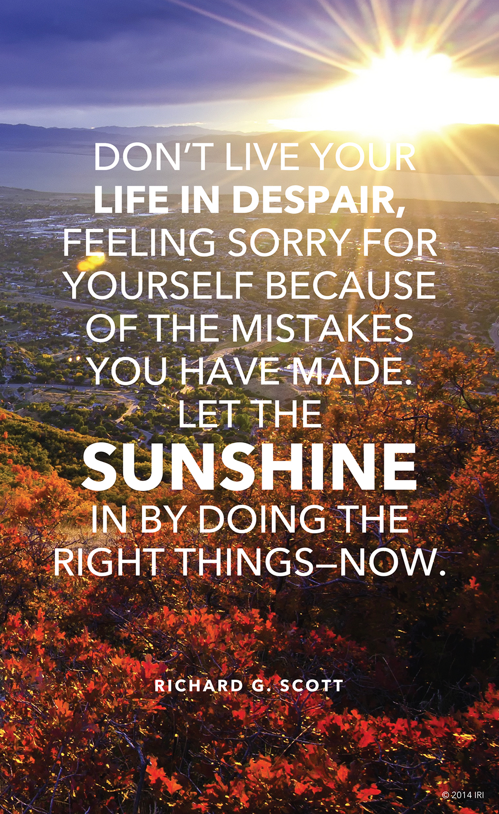 Sunshine In Your Life - HD Wallpaper